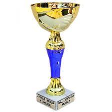 Puchary w turnieju tenisa stołowego wręczone !