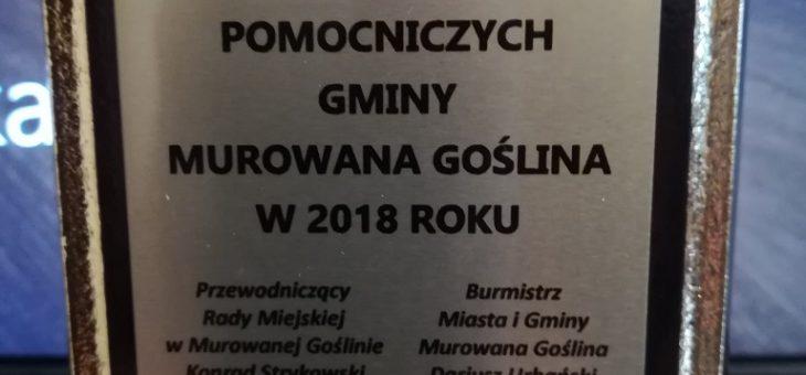 Turniej Sołectw 2018 zakończony.